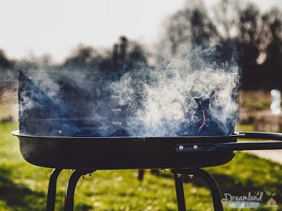 Choosing The Right Barbecue