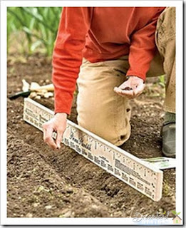 Smart Stick - Home Gardening Tips: Where To Start Your First Home Garden
