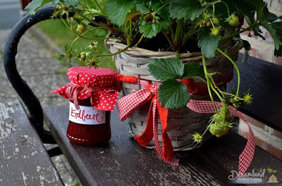 Container Gardening Strawberries Potted Plants