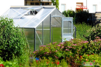 Greenhouse - Protecting Plants From Frost, Storing Plants Outdoors During the Winter