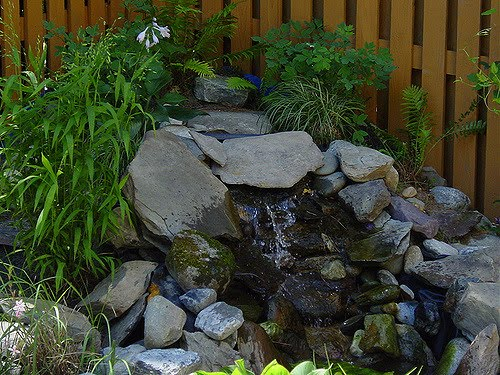 diy pond water garden ideas